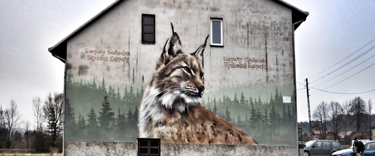Street art Arkadiusz Andrejkow Komańcza Ryś 2017